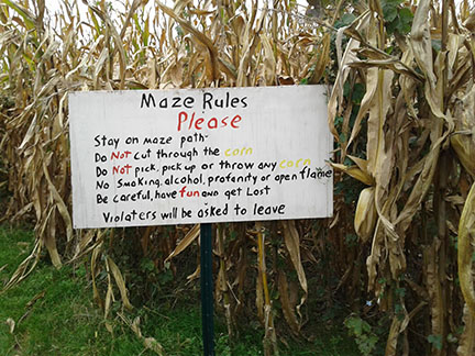 Tuttles corn maze is just one of the Halloween activities available to people in the MVHS community.