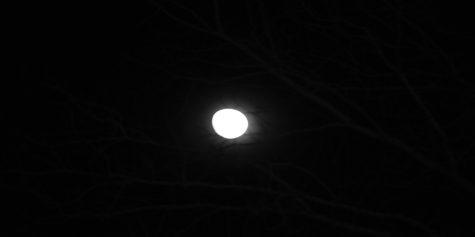 New moon theory
